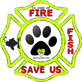 reflective fish rescue decal, fish alert, save my fish, fish alert sticker, fish window sticker, fish inside, fish emergency decal, fish inside decal, fish finder, fish rescue alert decal, firefighter decal, refelctive decal, reflective sticker, in case of fire, firefighter decal, fire department